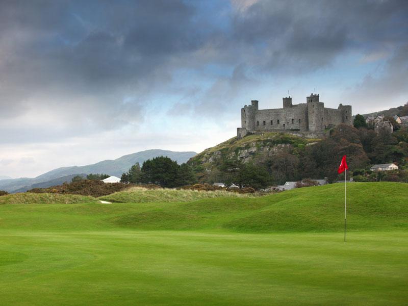 lynx golf club reviews ratings