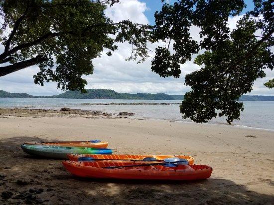 occidental grand papagayo resort reviews